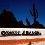 Homes For Sale in Coyote Ranch of Casa Grande, AZ