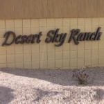 Homes for sale in Desert Sky Ranch in Casa Grande, AZ